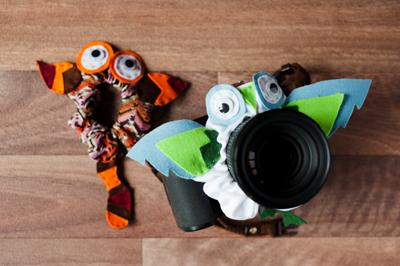 camera lens buddy