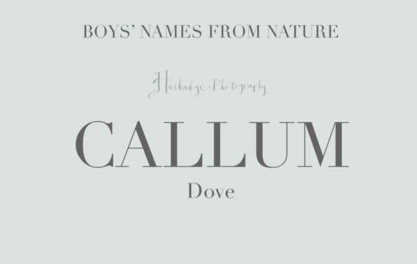 10 boy's names inspired by nature