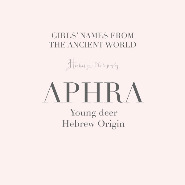 Aphra